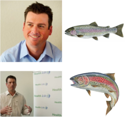 chris or rainbow trout