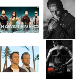 Hawaii Five O or Sons of Anarchy