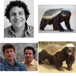 andy or honey badger
