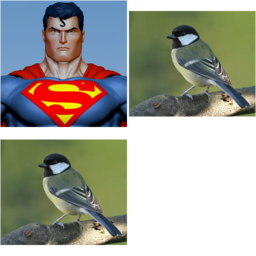 Superman or Not Superman